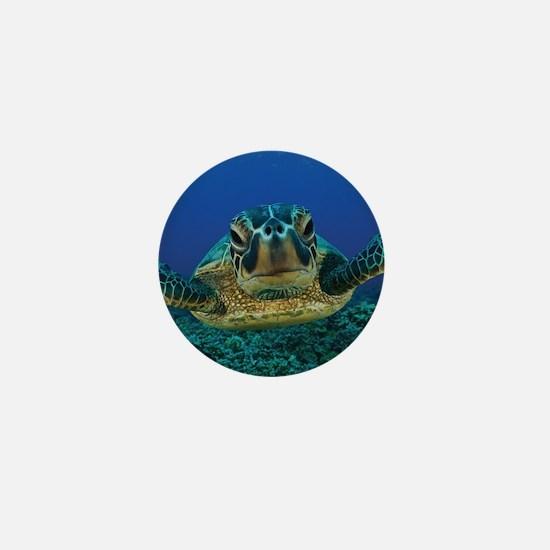 Turtle Swimming Mini Button
