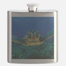 Turtle Swimming Flask
