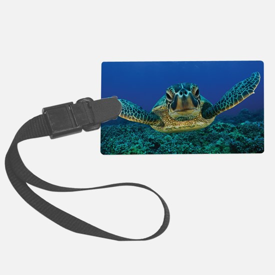 Turtle Swimming Luggage Tag