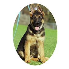 Cute German shepherd dog Oval Ornament