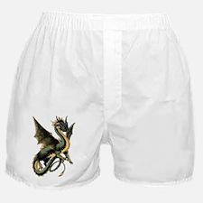 Great Dragon Boxer Shorts