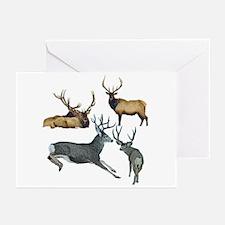 Bull elk and buck deer 1 Greeting Cards (Pk of 10)