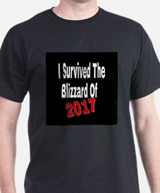 I Survived The Blizzard Of 2017 T-Shirt