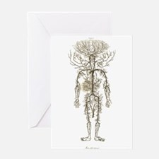 Circulatory System, Arteries Greeting Cards