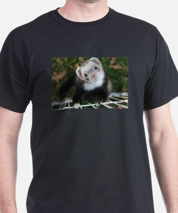 Noodle The Ferret T-Shirt
