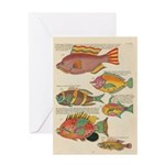 Card Greeting Cards