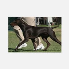 Cute Pointer Rectangle Magnet