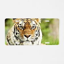 Unique Animal tiger Aluminum License Plate