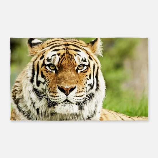 Cute Tiger Area Rug