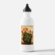 flowering cactus, southwest art Water Bottle