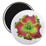 Pink w/ Green Edge Daylily Magnet
