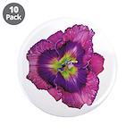 Lavender Eye Daylily 3.5
