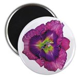 Lavender Eye Daylily 2.25