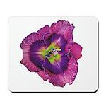 Lavender Eye Daylily Mousepad