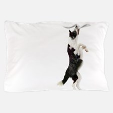 Border Collie Clingy Dog Pillow Case