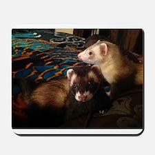 Adorable Ferrets Mousepad