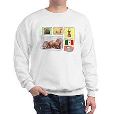 Mexico t-shirt shop Sweatshirt