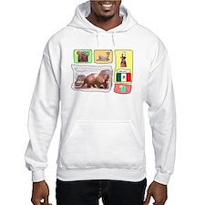 Mexico t-shirt shop Hoodie