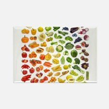 Various Fruits and Vegetables Rainbow Magnets