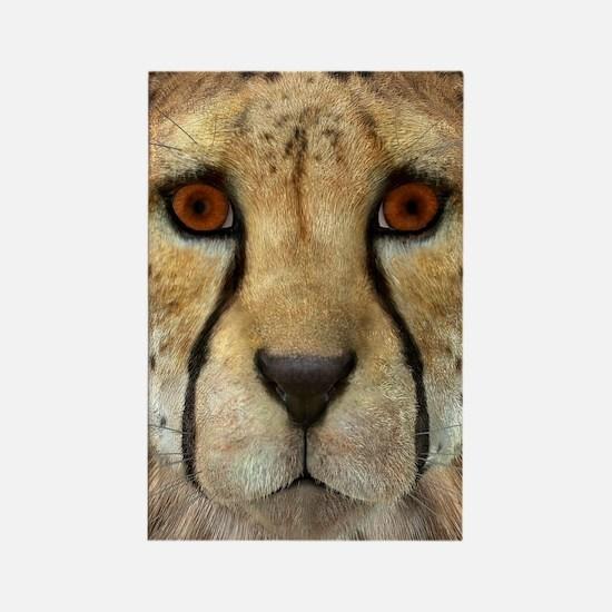 Cheetah Magnets