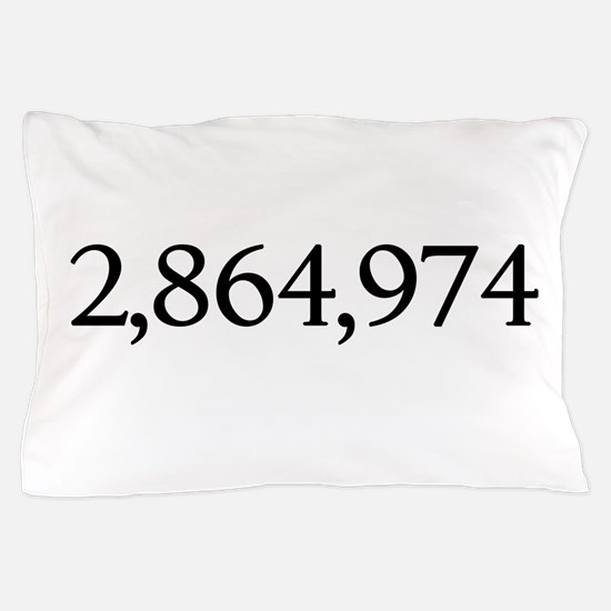 Cute Electoral college Pillow Case