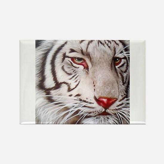 Tiger-white Magnets