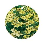 Coreopsis Moonbeam Ornament (Round)