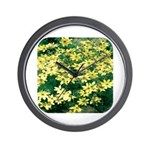 Coreopsis Moonbeam Wall Clock