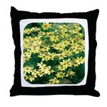 Coreopsis Moonbeam Throw Pillow