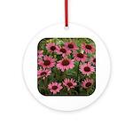 Echinacea Magnus Ornament (Round)
