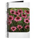 Echinacea Magnus Journal