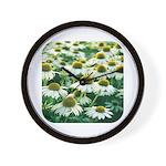 Echinacea White Coneflower Wall Clock