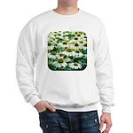 Echinacea White Coneflower Sweatshirt