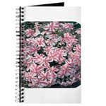 Phlox Candy Stripe Journal