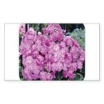 Phlox Lilac Rectangle Sticker
