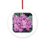 Phlox Lilac Ornament (Round)