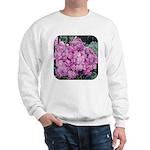 Phlox Lilac Sweatshirt