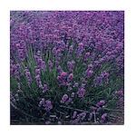 Lavandula - Lavender Tile Coaster