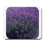 Lavandula - Lavender Mousepad