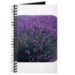 Lavandula - Lavender Journal