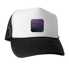 Lavandula - Lavender Trucker Hat