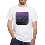Lavandula - Lavender White T-Shirt