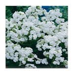 Phlox White Tile Coaster