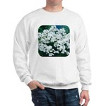 Phlox White Sweatshirt