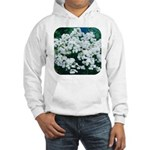 Phlox White Hooded Sweatshirt