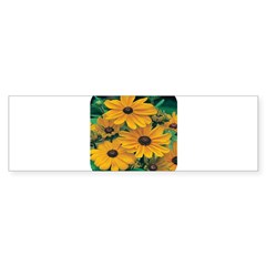 Rudbeckia - Black Eye Susan Bumper Bumper Sticker