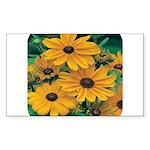 Rudbeckia - Black Eye Susan Rectangle Sticker