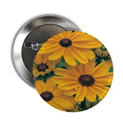 Rudbeckia - Black Eye Susan 2.25
