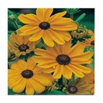 Rudbeckia - Black Eye Susan Tile Coaster