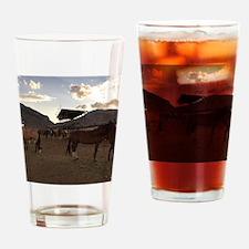The Cody Wyoming Broncos Drinking Glass